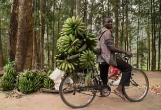 bike_bananas